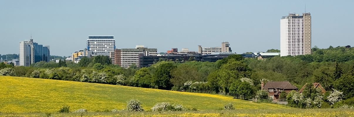 Basingstoke Skyline